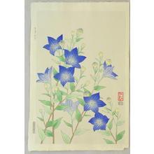 Ito Nisaburo: Chinese Bell Flower - Japanese Art Open Database