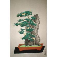Ito Nisaburo: Potted Chrysanthyemum - Japanese Art Open Database