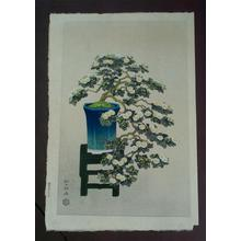 Ito Nisaburo: Potted Chrysanthyemums - Japanese Art Open Database