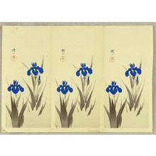 Ito Nisaburo: Two Iris - trial prints - Japanese Art Open Database