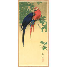 Ito Sozan: Blue and Red Macaws - Japanese Art Open Database