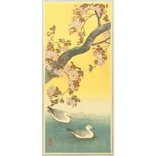 Ito Sozan: Two Gulls and Cherry Tree - Japanese Art Open Database