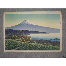 Henmi Takashi: Fuji from tea farm - Japanese Art Open Database