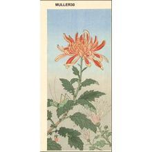Jo: Grasshopper and Chrysanthemum - Japanese Art Open Database