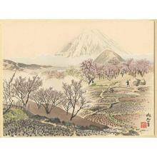 Jokata Kaiseki: Fuji from a Shimosoga Plum Orchard — 小田原梅園からの富士 - Japanese Art Open Database