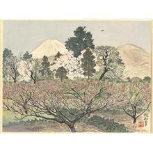 Jokata Kaiseki: Mt Fuji from the Peach Orchards of Hara - Japanese Art Open Database