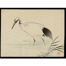 Kajita Hanko: Japanese Crane - Japanese Art Open Database