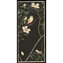Kasamatsu Shiro: Bird and Flower - Japanese Art Open Database