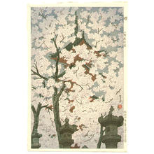 笠松紫浪: Cherry Blossoms At Toshogu Shrine, Ueno - Japanese Art Open Database