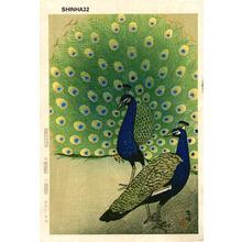 Kasamatsu Shiro: Peacocks - Japanese Art Open Database