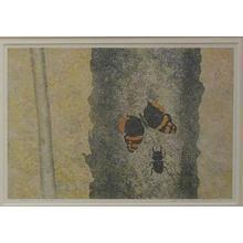 Katsuda Yukio: Butterfly and Beetle — 蝶と虫 - Japanese Art Open Database