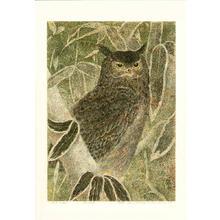 Katsuda Yukio: No 124- Owl - Japanese Art Open Database