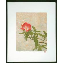 Katsuda Yukio: No 195- Hibiscus - Japanese Art Open Database