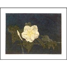 Katsuda Yukio: No 35- Flower 1 - Japanese Art Open Database