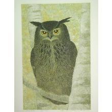 Katsuda Yukio: White Birch and Horned Owl — 白樺とみみずく - Japanese Art Open Database