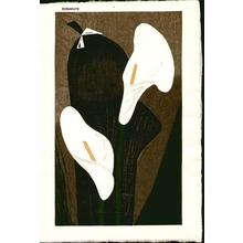 Kawano Kaoru: Unknown- white calla lilies - Japanese Art Open Database