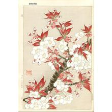 Kawarazaki Shodo: Cherry - Japanese Art Open Database