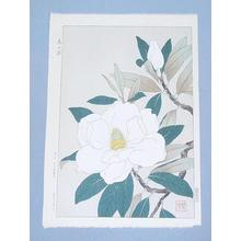 Kawarazaki Shodo: Flowers 11 - Japanese Art Open Database