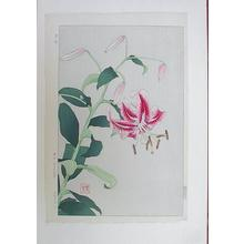 Kawarazaki Shodo: Flowers 8 - Japanese Art Open Database