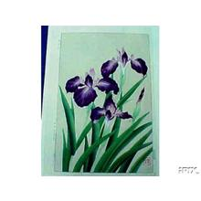 Kawarazaki Shodo: Iris - Japanese Art Open Database