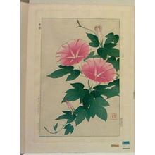 Kawarazaki Shodo: Morning Glorys - Japanese Art Open Database