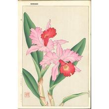 Kawarazaki Shodo: Orchid 2 - Japanese Art Open Database