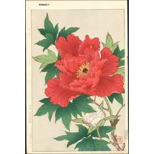 Kawarazaki Shodo: Red Peonies - Japanese Art Open Database