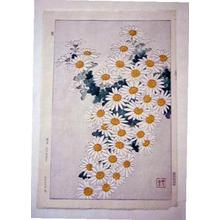 Kawarazaki Shodo: Unknown, Dasies - Japanese Art Open Database