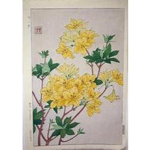 Kawarazaki Shodo: Unknown, Rhododendron - Japanese Art Open Database