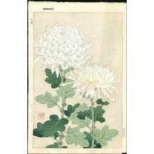 Kawarazaki Shodo: White Chrysanthemums - Japanese Art Open Database