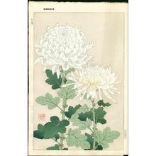 Kawarazaki Shodo: White Chrysanthemums - Japanese Art Open Database