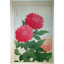 川瀬巴水: Dahlia - Japanese Art Open Database