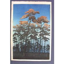 Kawase Hasui: Hikawa Park at Omiya - Japanese Art Open Database