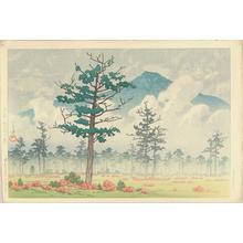 Kawase Hasui: Senjogahara, Nikko — 日光戦場ヶ原 - Japanese Art Open Database