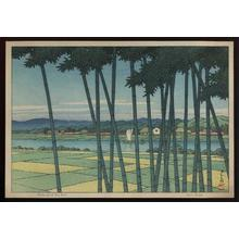 Kawase Hasui: Bamboo Forest, Tama River - Japanese Art Open Database