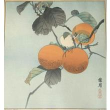 Keigetsu: Unknown birds and fruit - Japanese Art Open Database