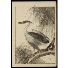 Imao Keinen: Heron - Japanese Art Open Database