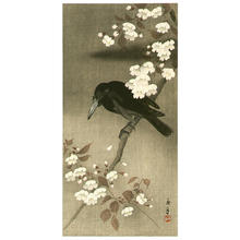 Imao Keinen: Crow and Cherry Blossoms - Japanese Art Open Database