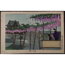 小林清親: Wisteria at Kameido — 亀井戸藤 - Japanese Art Open Database