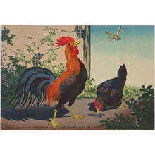 Kobayashi Kiyochika: Chicken and Dragonfly — 鶏と蜻蛉 - Japanese Art Open Database