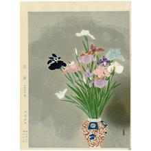 Tsuruya Kokei: Irises - Japanese Art Open Database