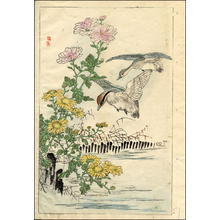 幸野楳嶺: Ducks and Chrysanthemums - Japanese Art Open Database