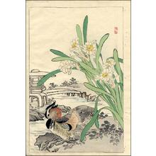 幸野楳嶺: Mandarin Duck and Narcissus - Japanese Art Open Database