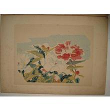 Kotozuka Eiichi: Unread 1 - Japanese Art Open Database