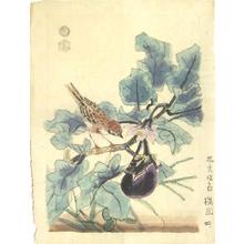 Kotozuka Eiichi: Bird and eggplant - Japanese Art Open Database