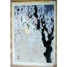 Kotozuka Eiichi: Cherry tree at night - Japanese Art Open Database