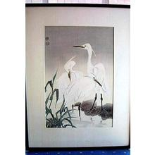 Kotozuka Eiichi: THREE SNOWY HERONS - Japanese Art Open Database