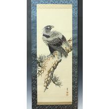 Masugi Seikin: Eagle on Pine Tree - Japanese Art Open Database
