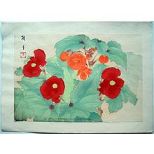 Mifume Tsunate: Begonia - Japanese Art Open Database