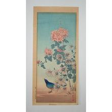 Nishimura Hodo: Blue Bird Chrysanthemum and Aste - Japanese Art Open Database